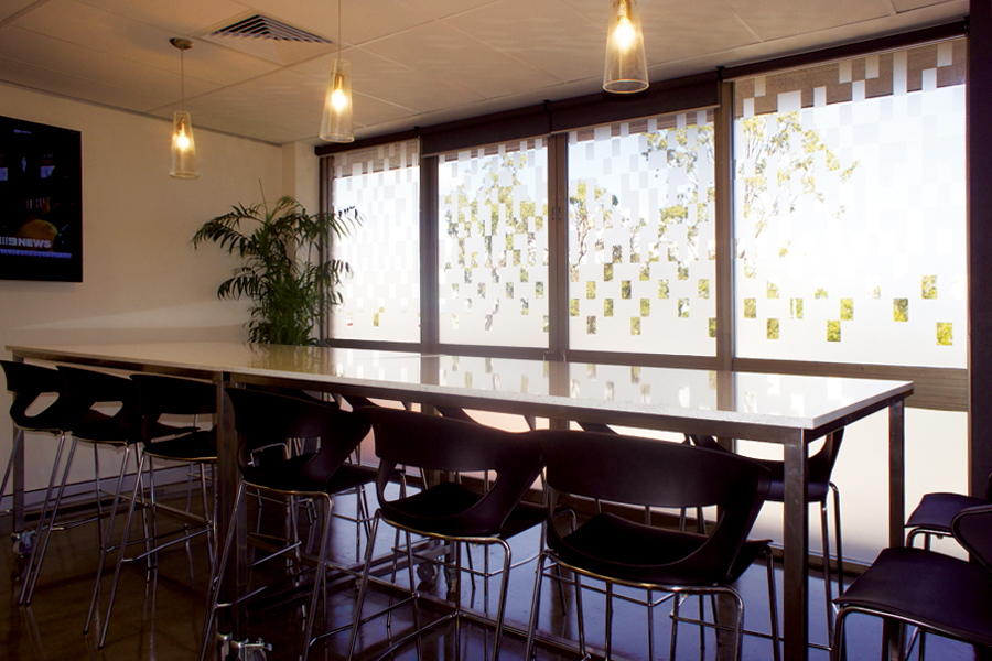 Window Treatments - cut out lettering, frosted treatments, tinting